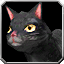 catblack.png